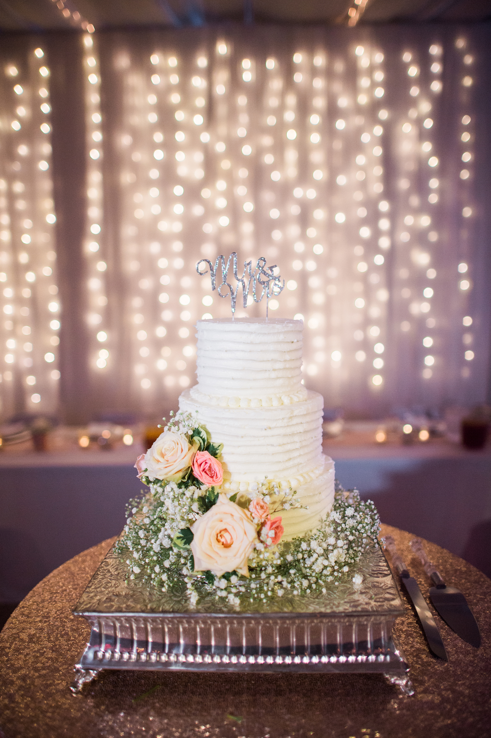 wedding cakes salina ks beautiful isolations photography llc manhattan ks 25413